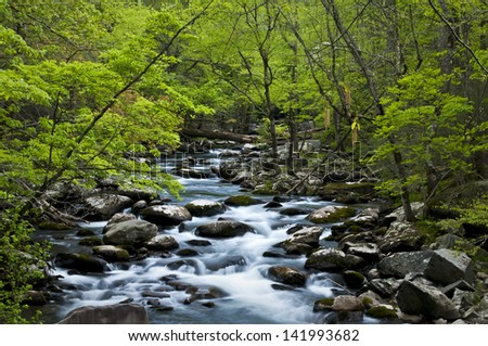 Morning light on the Middle Prong of the Little River, Great Smoky Mountains National Park, Tennessee. - stock photo