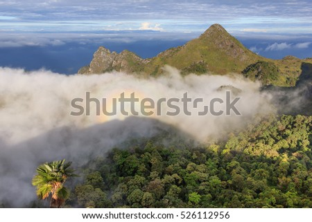 Morning Mist and Fog Moving Slowly From View Point in Sunrise at Doi Luang Chaing dao , High Mountain in Chiangmai , Thailand