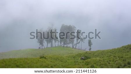 Morning Mist at Ranu Kumbolo, Semeru Volcano Mountain, East Java, Indonesia. Semeru Mountain also known as Mahameru Mountain in Indonesia means the great mountain.  - stock photo