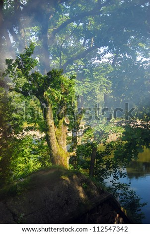 Morning mist in a green beautiful morning summer forest. Blue water reflection. - stock photo