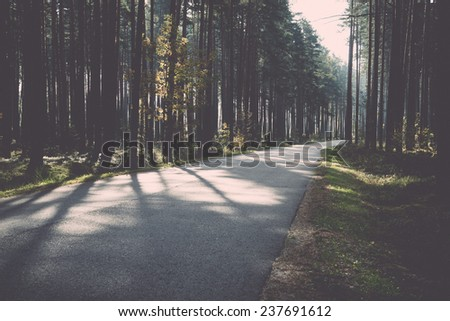 Morning sun beams over autumn road in the country - retro, vintage style look - stock photo
