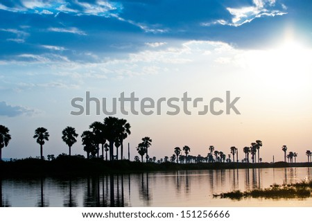 morning sun over the lake manze in tanzania - national park selous game reserve - stock photo