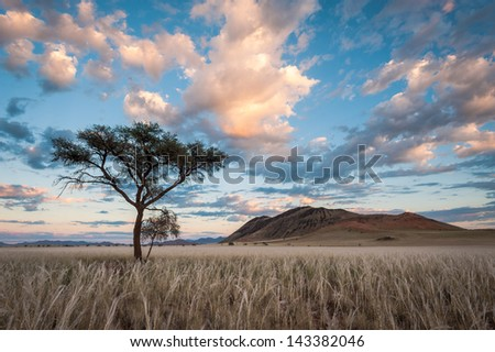 Morning Sunlight shines golden hues onto a cloudy sky above the Namib Rand Landscape. - stock photo