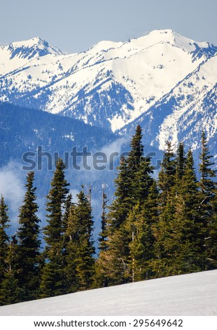 Morning View of Hurricane Ridge at Olympic National Park - stock photo