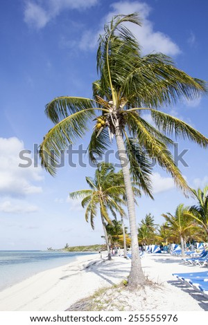 Morning view of still empty beach on Little Stirrup Cay (The Bahamas). - stock photo