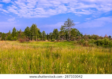 Morning water meadow small river. - stock photo