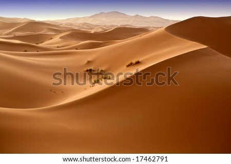 Moroccan desert dune background 04. Blue sky