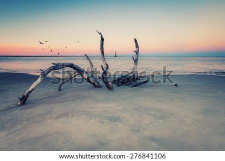 Morris Island Lighthouse at sunset, South Carolina, USA - stock photo