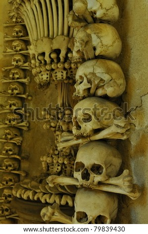 mortal remains in dark ossuary - stock photo