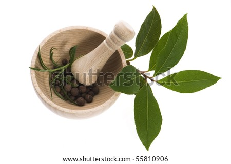 Mortar and pestle, with fresh-picked herbs - stock photo