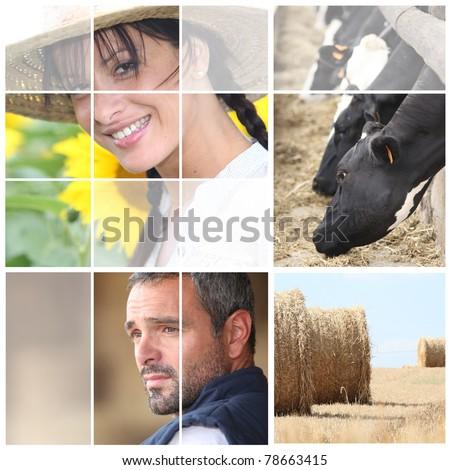 Mosaic of farming couple - stock photo