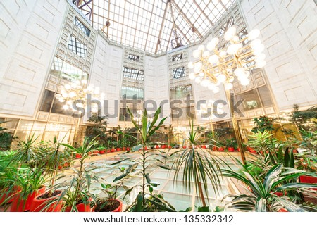 MOSCOW - DEC 9: Flowers in the Winter Garden of the Academy of Sciences on December 9, 2010 in Moscow, Russia. - stock photo