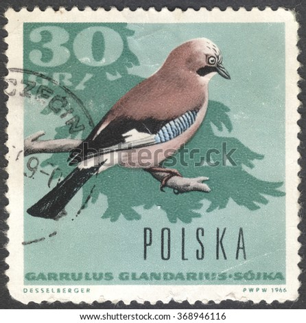 """MOSCOW, RUSSIA - CIRCA JANUARY, 2016: a post stamp printed in POLAND shows a bird with the inscription """"Garrulus glandarius"""", the series """"Forest birds"""", circa 1966 - stock photo"""