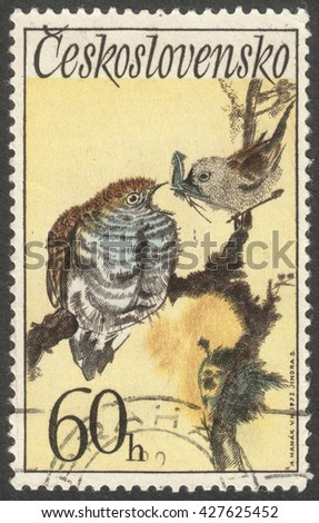 "MOSCOW, RUSSIA - CIRCA MAY, 2016: a post stamp printed in CZECHOSLOVAKIA  shows a Cuculus canorus bird, the series ""Songbirds"", circa 1972 - stock photo"