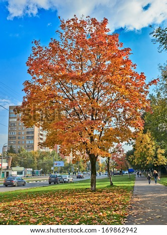 Moscow, Russia - September 18, 2013: Street of Moscow in autumn. Cars, hurrying people and the beauty of trees in autumn.  - stock photo