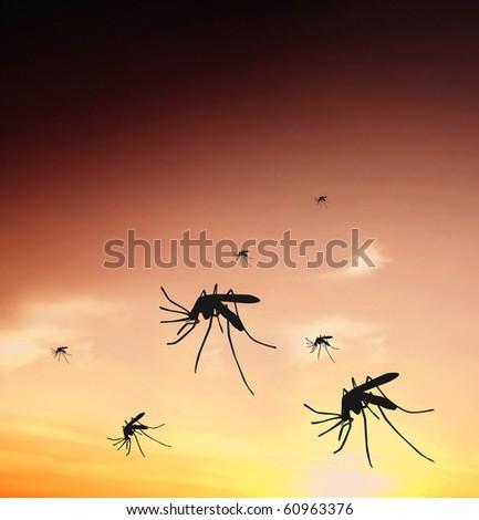Mosquitos - stock photo