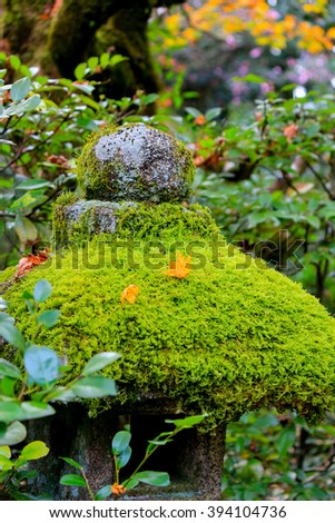 Moss above stone post