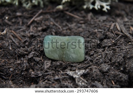 Moss agate on forest floor - stock photo