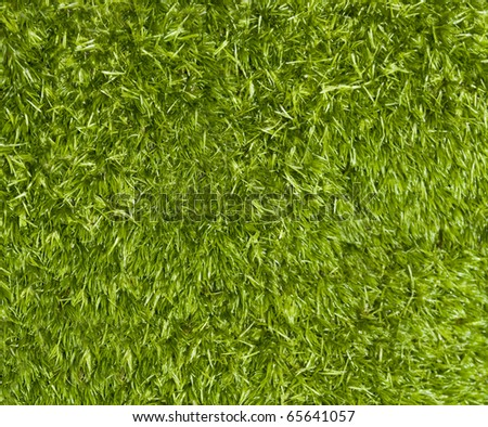 Moss background - fresh green moss texture - stock photo