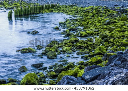 Moss covered rocks along the shoreline on first beach in La Push, Washington.