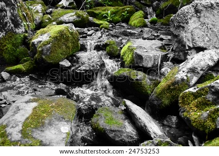 Moss covered rocks in a stream. - stock photo