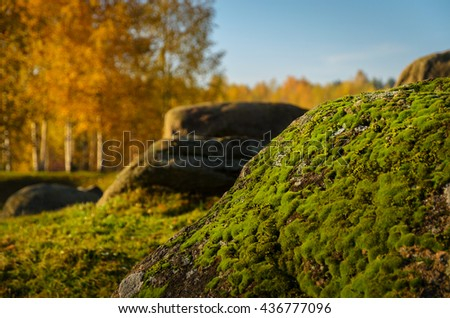 moss covered stone in the autumn park - stock photo