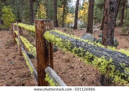 Moss covered wooden fence near Winthrop, Washington.