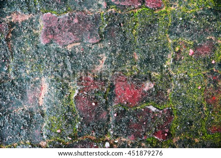 moss on dirty grunge cement blocks floor as abstract background - stock photo