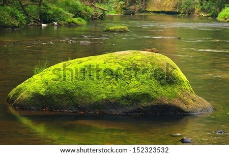Mossy boulder in the river under trees at mountain river. Fresh spring air in the evening after rainy day, deep green color of fern and moss  - stock photo