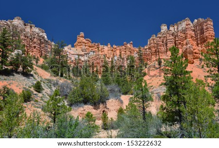 mossy creek trail hoodoos, bryce canyon national park, utah, usa. multi colored weathered eroded sandstone - stock photo