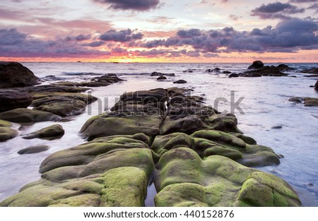 mossy rock leading line at kudat Sabah Malaysia. image contain soft focus and blur.