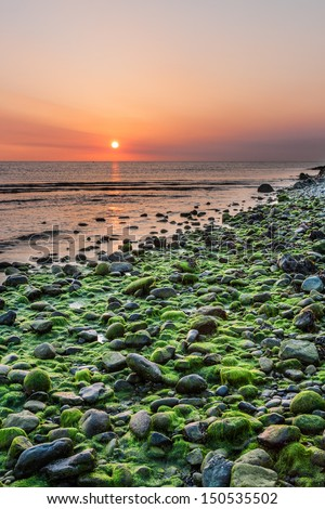 Mossy rocks and sunrise at Bray Head in Bray County Wicklow Ireland - stock photo