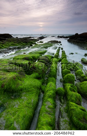 Mossy rocks at a beach in Kudat, Sabah, East Malaysia, Borneo - stock photo