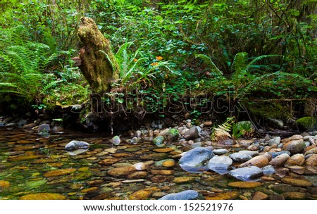 Mossy stump and flowers next to a mountain stream - stock photo