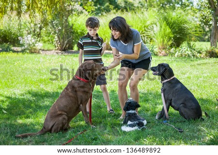 Mother and child training dogs with treats at a park - stock photo