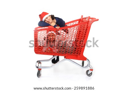 mother and daughter and the shopping cart - stock photo