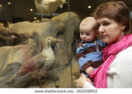 Mother and her son looking at bird in the museum - stock photo