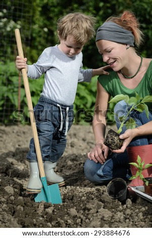 Mother and son planting saplings in the garden - stock photo