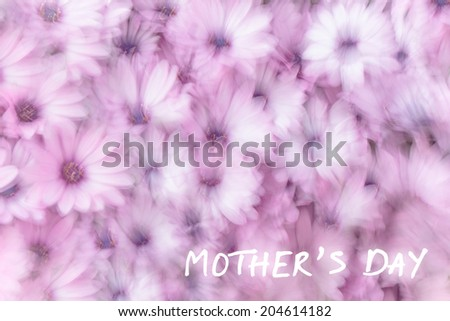 Mother's day greeting card, holiday greetings, gift for mommy, dreamy background of pink daisy flowers, flowery field in spring garden, slow motion photography effect, fine art postcard - stock photo