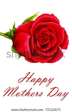 Mother's day red rose, isolated on a white background - stock photo
