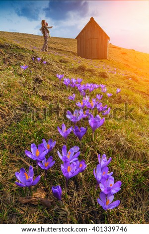 Mother with a baby in her arms enjoy majestic sunrise in a valley of crocuses.