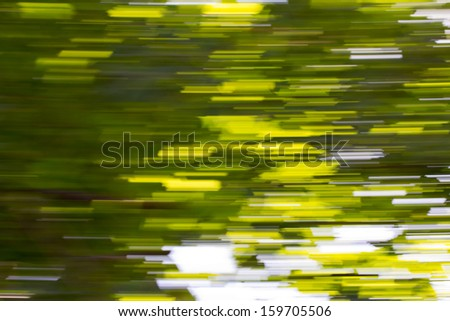Motion blurred foliage - stock photo