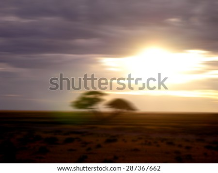 Motion blurred sunset on the African savannah with trees and cloudy sky, for travel backgrounds  - stock photo