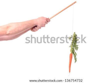 motivation of dangling a carrot on a stick isolated on white - stock photo