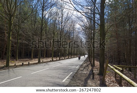 Motorcyclist driving fast over a road through a forest