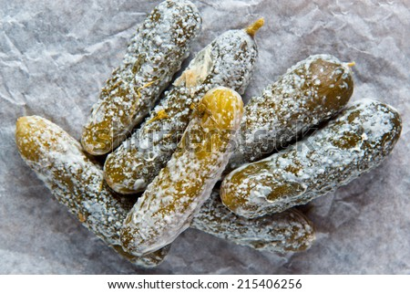Mouldy Pickled Cucumber  - stock photo