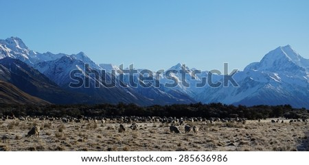 Mount Cook New Zealand - In the footsteps of Lord of the Rings - stock photo