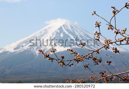 Mount Fuji and sakura not blossom at Kawaguchiko lake side. - stock photo