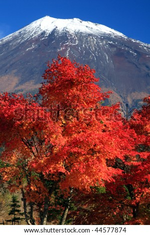 Mount Fuji with gorgeous Fall leaves in the foreground - stock photo