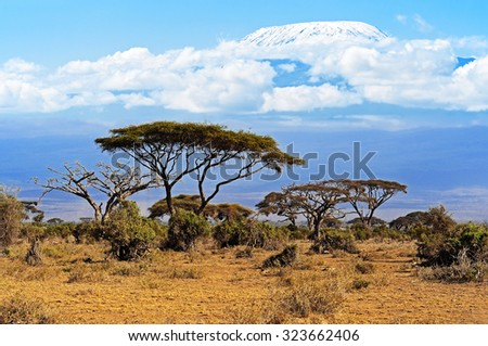 Mount Kilimanjaro in Kenya Amboseli National Park - stock photo